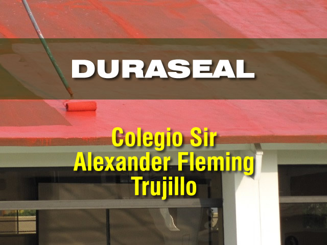 Duraseal_Fleming